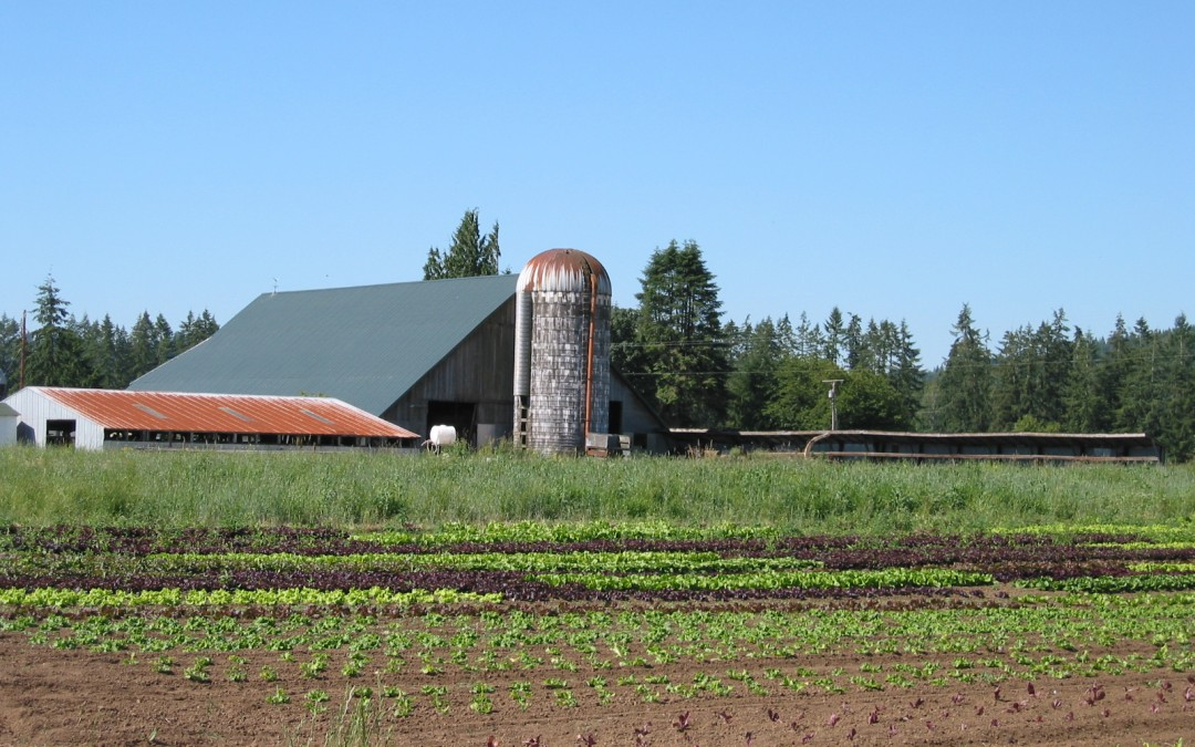 Agriculture in the Chehalis Basin